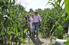 Daar staat u dan, in de wei tussen de koeien. Voor u ligt een veld van 3 hectare mais. Het veld zit vol met gangen
