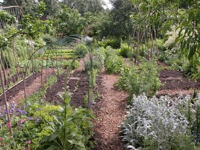 Naturentuin Goirle Cursussen Ecologisch tuinieren
