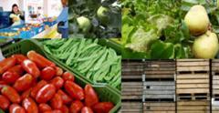 In onze Landwinkel vind je vers fruit uit onze eigen boomgaard, met zorg voor gezondheid en milieu geteeld.