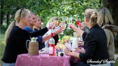 Picknick-MEN-tocht samen met je vriendinnen, collega's of vrienden