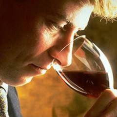 Een wijn proeven is meer dan even ruiken en een slokje nemen. Een wijn moet je ervaren.En dat begint al in de wijngaard.